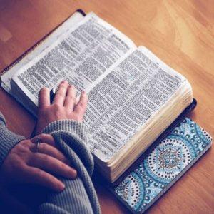 La Palabra de Dios, alimento cotidiano